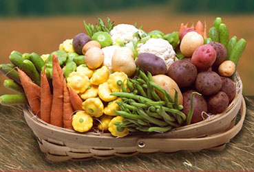 Vegetable-Basket 22